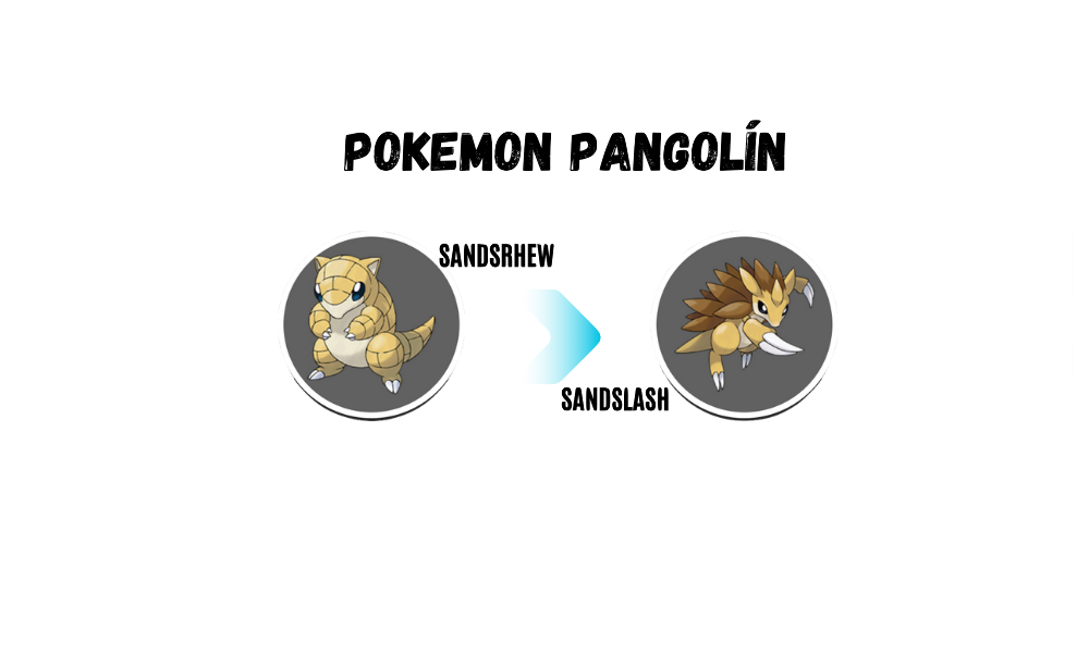 pokemon pangolin sandshrew evoluciona a sandslash
